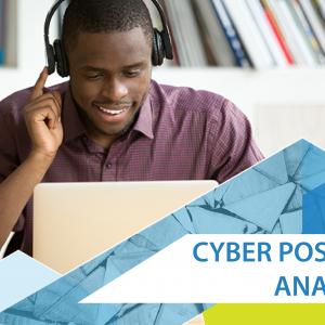 Cyber Posture Analysis